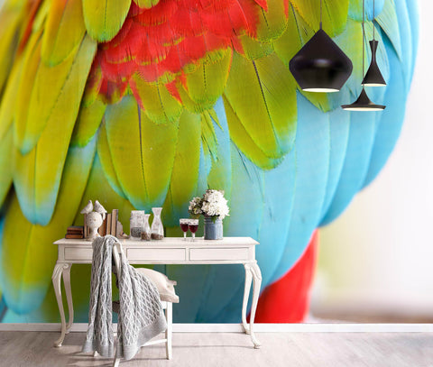 3D Multicolored, Parrot feather Wallpaper