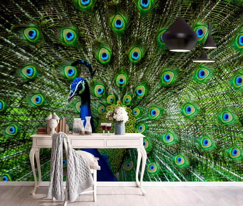 3D Gorgeous, Peacock, Feather Wallpaper