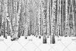 3D Winter Snow Forest Wall Mural Wallpaper 124