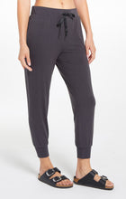 Load image into Gallery viewer, Laine Whisper Fleece Jogger
