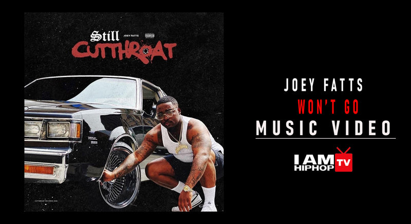 JOEY FATTS WON'T GO FT. BLXST