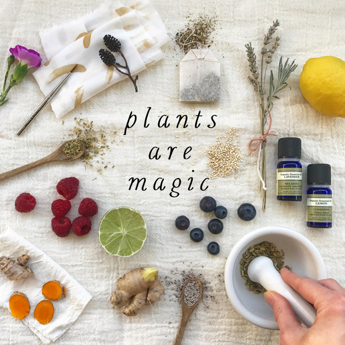 Plants Are Magic - the magazine