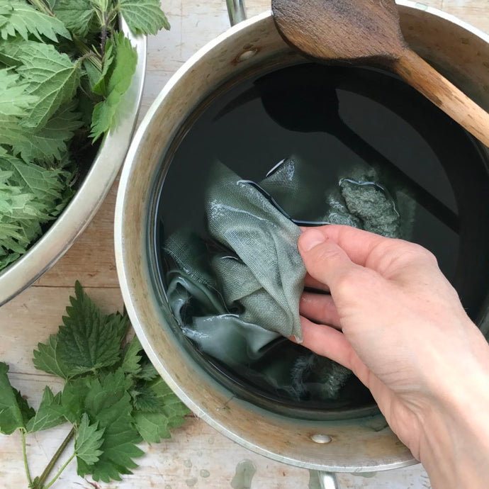 Dyeing with nettles