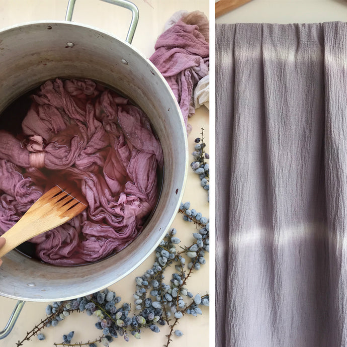 Dyeing with berries