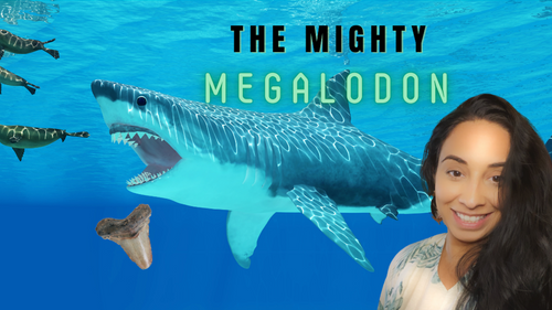 The Mighty Megalodon with Jackie Flores + (Get 25% Off w/ Special Offer)
