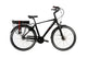 City E-Bike Devron 28125 - Coaster Brake | Panasonic Cells  36V 11Ah | Standard Bms 250W