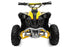 products/Eco_Avenger_Prime_Electric_Quad_1000W_5.jpg