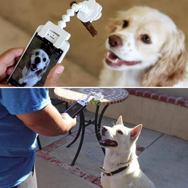 Pet Bait Clip Selfie Stick