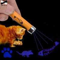 Interactive LED Laser Pointer Pen