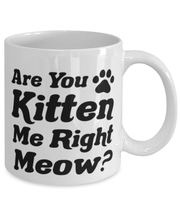 Are You Kitten Me Right Meow 11 oz White Coffee Mug, Gift For Cat Lovers, Novelty Coffee Mugs Gift For Her, Birthday, Just Because Present Ideas For Cat Lovers