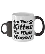 Are You Kitten Me Right Meow Color Changing Coffee Mug, Gift For Cat Lovers, Novelty Coffee Mugs Gift For Her, Birthday, Just Because Present Ideas For Cat Lovers