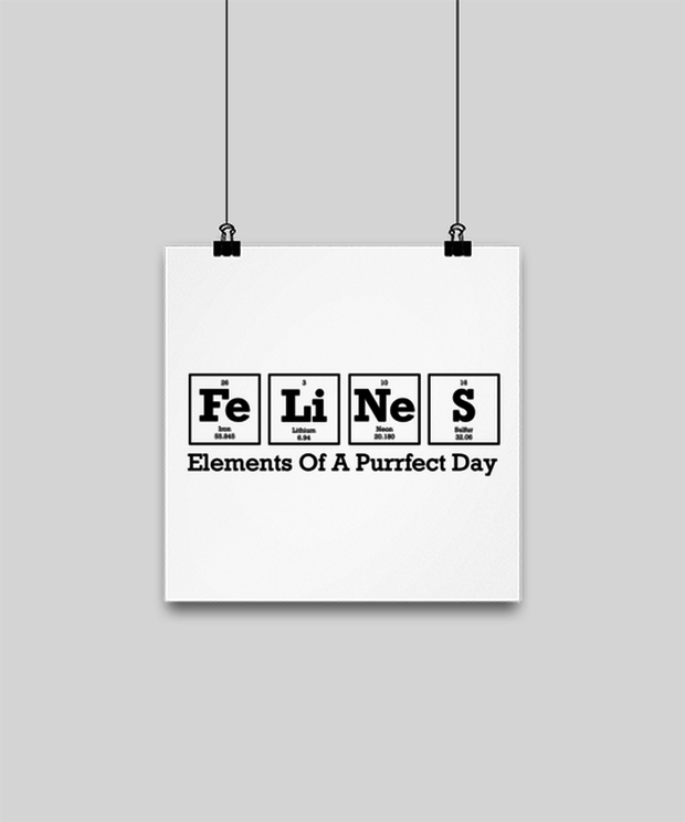 Felines Elements Of A Purrfect Day High Gloss Poster 10 in x 10 in , Gift For Cat And Chemistry Lovers, Posters & Prints Gift For Her, Birthday Present Ideas For Cat And Chemistry Lovers