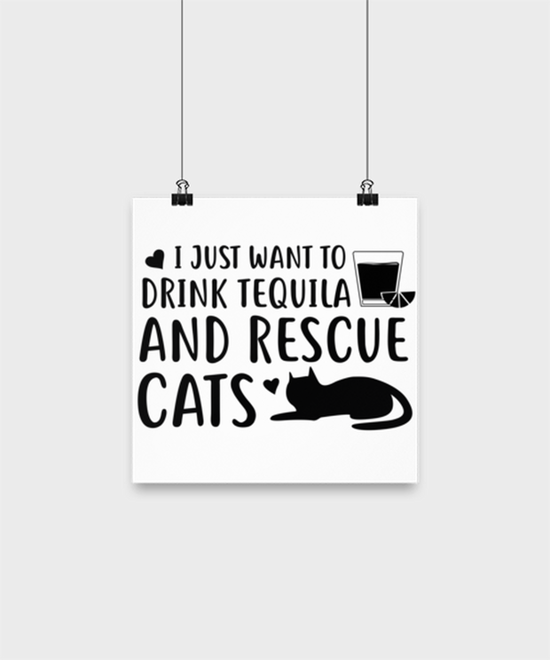 Want To Drink Tequila Rescue Cats High Gloss Poster 10 in x 10 in , Gift For Cats And Tequila Lovers, Posters & Prints Gift For Her, Birthday Present Ideas For Cats And Tequila Lovers