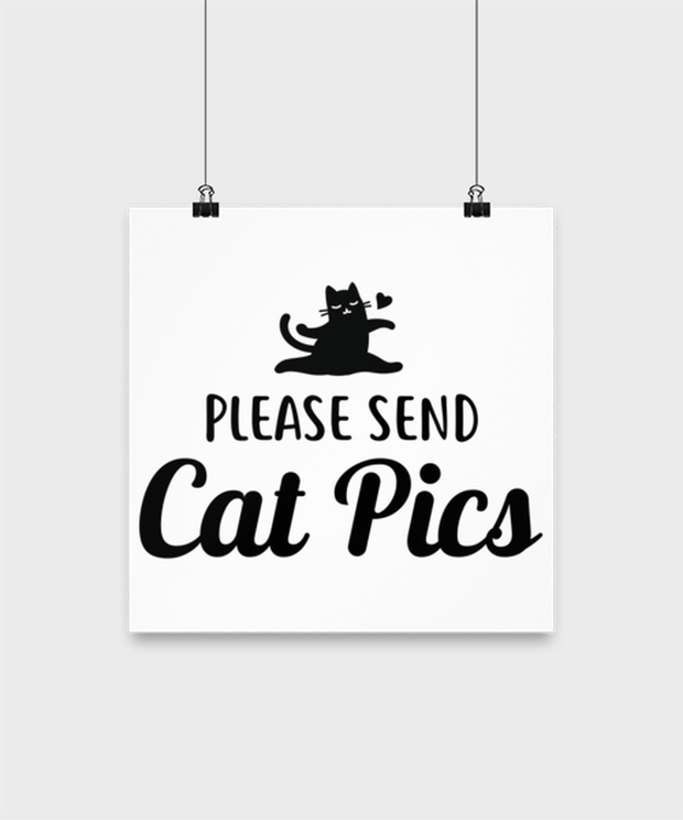 Please Send Cat Pics High Gloss Poster 12 in x 12 in, Gift For Cat Lovers, Posters & Prints Gift For Friend, Sister, Daughter, Birthday, Just Because Present Ideas For Cat Lovers