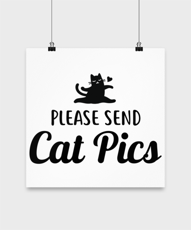 Please Send Cat Pics High Gloss Poster 14 in x 14 in, Gift For Cat Lovers, Posters & Prints Gift For Friend, Sister, Daughter, Birthday, Just Because Present Ideas For Cat Lovers