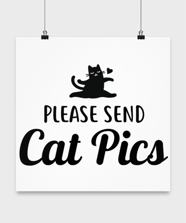 Please Send Cat Pics High Gloss Poster 16 in x 16 in, Gift For Cat Lovers, Posters & Prints Gift For Friend, Sister, Daughter, Birthday, Just Because Present Ideas For Cat Lovers