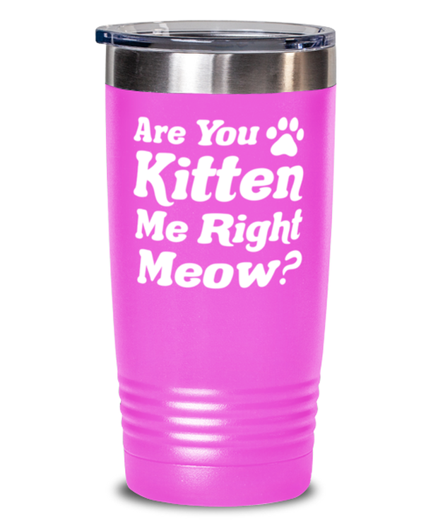 Are You Kitten Me Right Meow 20 oz Pink Drink Tumbler w/ Lid, Gift For Cat Lovers, Tumblers & Water Glasses Gift For Her, Birthday, Just Because Present Ideas For Cat Lovers