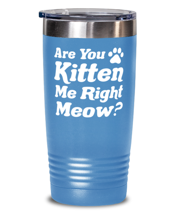 Are You Kitten Me Right Meow 20 oz Light Blue Drink Tumbler w/ Lid, Gift For Cat Lovers, Tumblers & Water Glasses Gift For Her, Birthday, Just Because Present Ideas For Cat Lovers