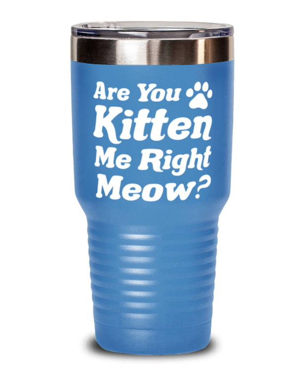 Are You Kitten Me Right Meow 30 oz Light Blue Drink Tumbler w/ Lid, Gift For Cat Lovers, Tumblers & Water Glasses Gift For Her, Birthday, Just Because Present Ideas For Cat Lovers