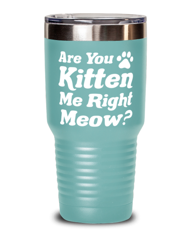 Are You Kitten Me Right Meow 30 oz Teal Drink Tumbler w/ Lid, Gift For Cat Lovers, Tumblers & Water Glasses Gift For Her, Birthday, Just Because Present Ideas For Cat Lovers