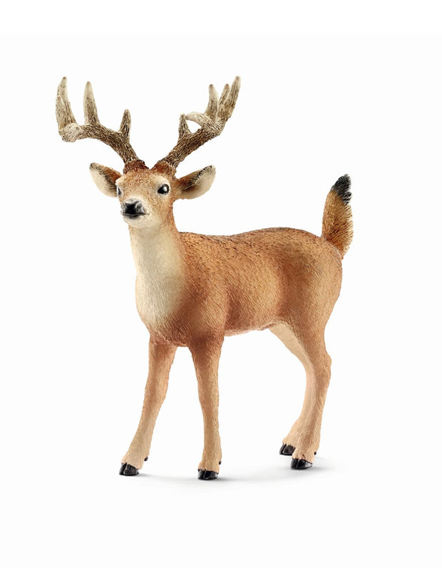 Schleich White Tailed Buck