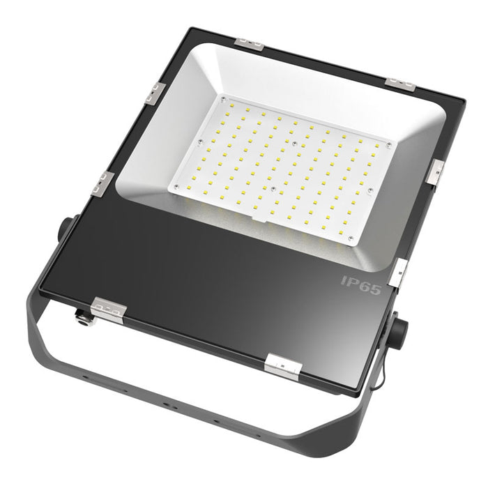 LED Flood Light Bulbs Outdoor 100 Watt 5000k IP66
