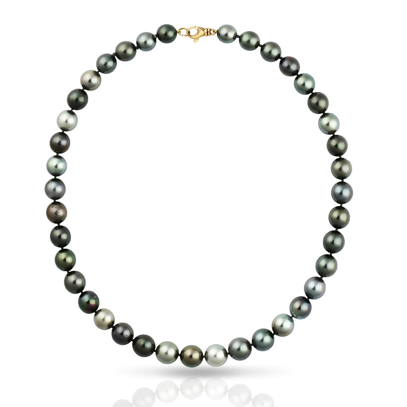 Tahitian Necklace Strand - Round 42cm  - 14KSTNYGRD001 - NANIHI  TAHITIAN  PEARLS