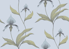 New Contemporary Orchid 66/4026