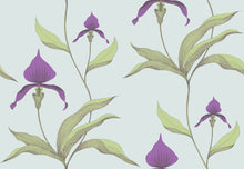 New Contemporary Orchid 66/4027