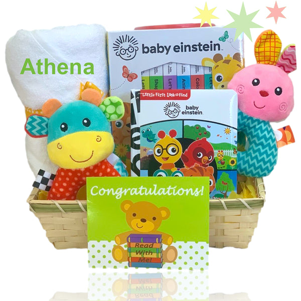 Baby Einstein Read Along and Snuggle
