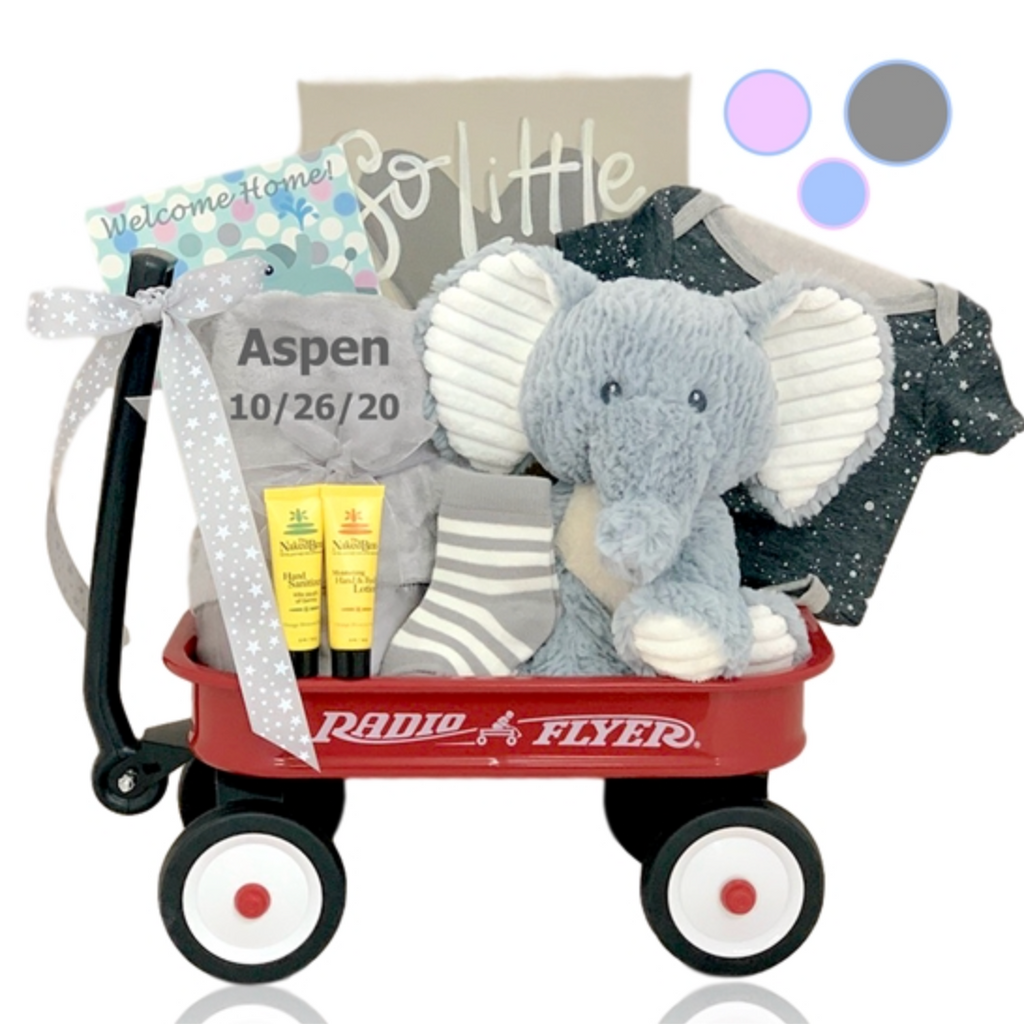 Elephant Buddy Wagon - Option to Personalize