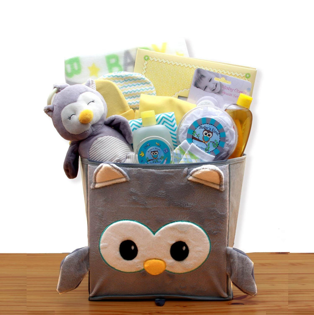 Hoot Owl Gender Neutral Baby Basket