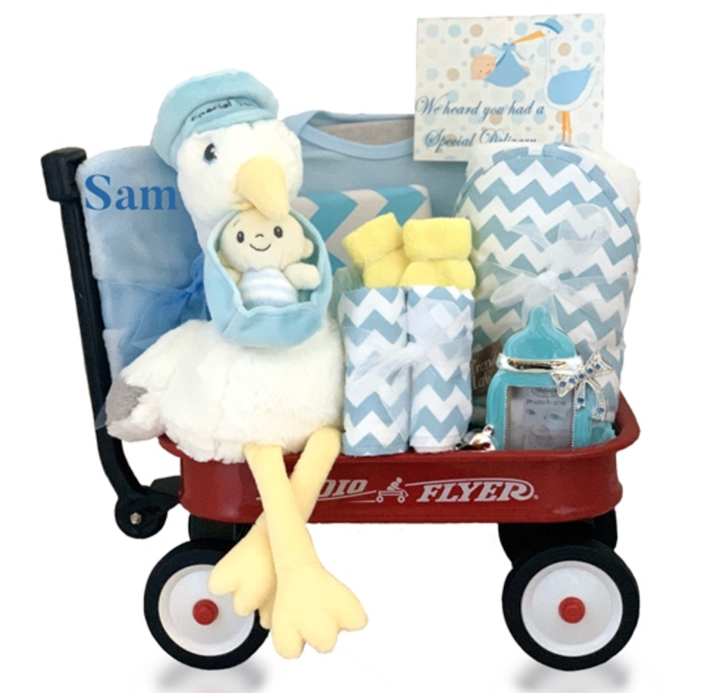 The Stork's Special Delivery in Blue