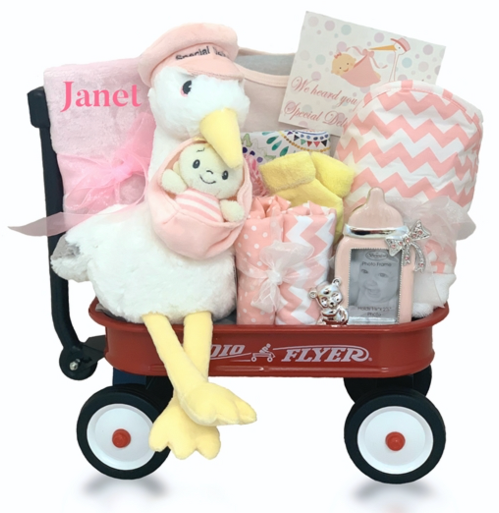 The Stork's Special Delivery in Pink