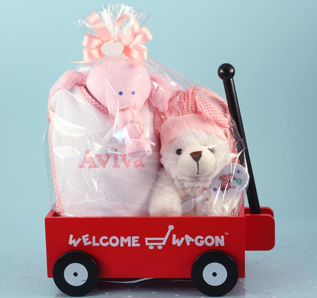 Mini Wagon Welcome Baby Girl Shower Presents