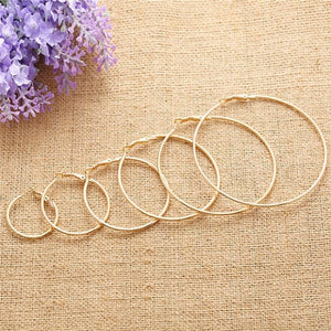 Trendy Hoop Earrings
