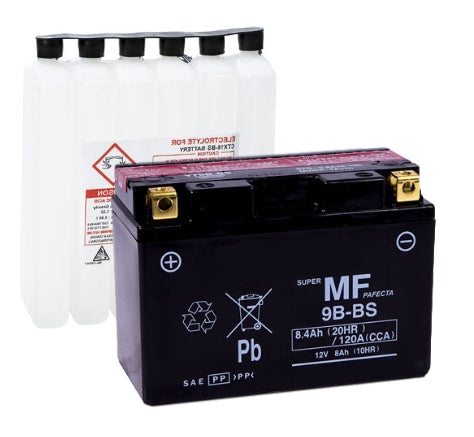 LT9B-BS AGM Maintenance Free Battery
