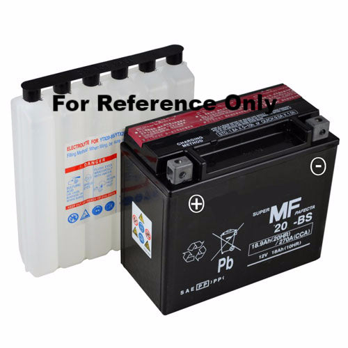 20-BS AGM Maintenance Free Battery