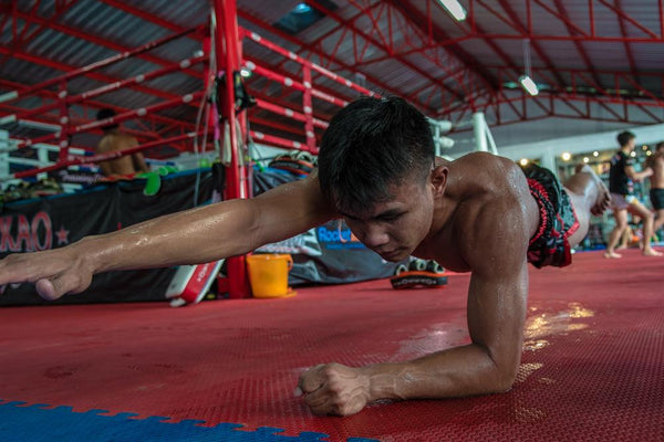 Why Planks are Great for Muay Thai!
