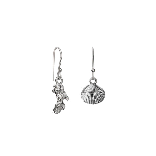 Cockle Earrings