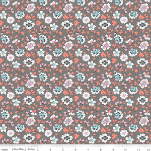 Paper Daisies Floral Gray