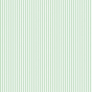 "1/8"" Stripe Sweet Mint"