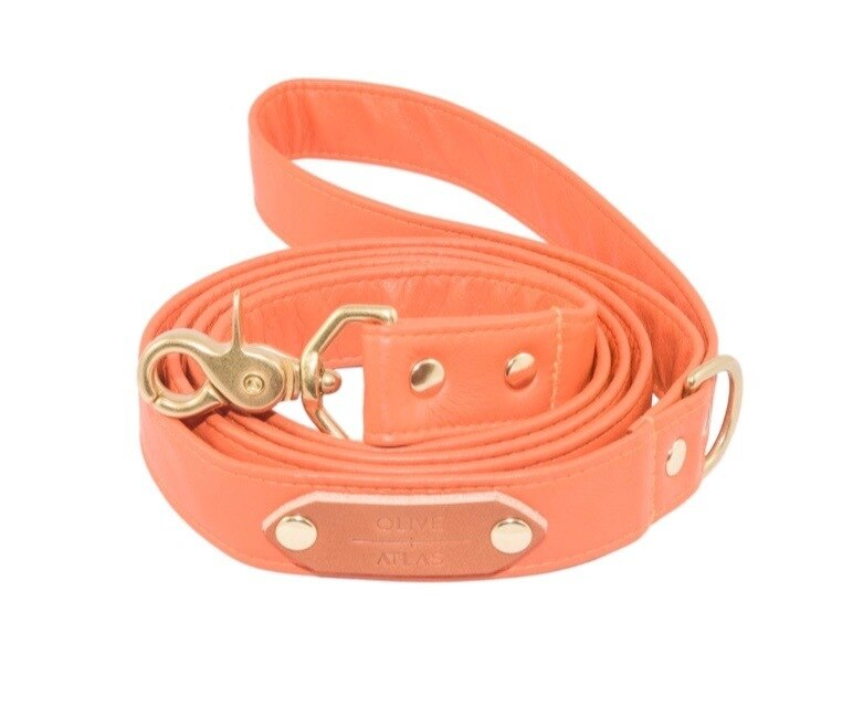 Olive & Atlas Leash