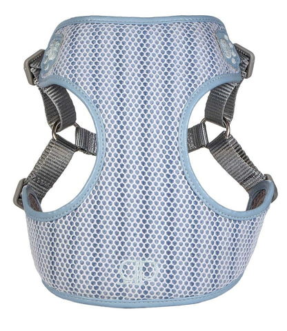 Apollo Pretty Paw Harness