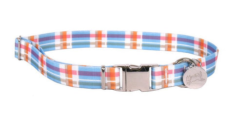 Southern Dawg Blue Madras
