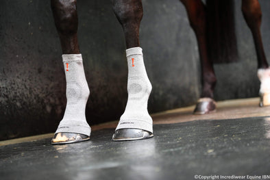 Why use the Incrediwear Equine Hoof Sock ?
