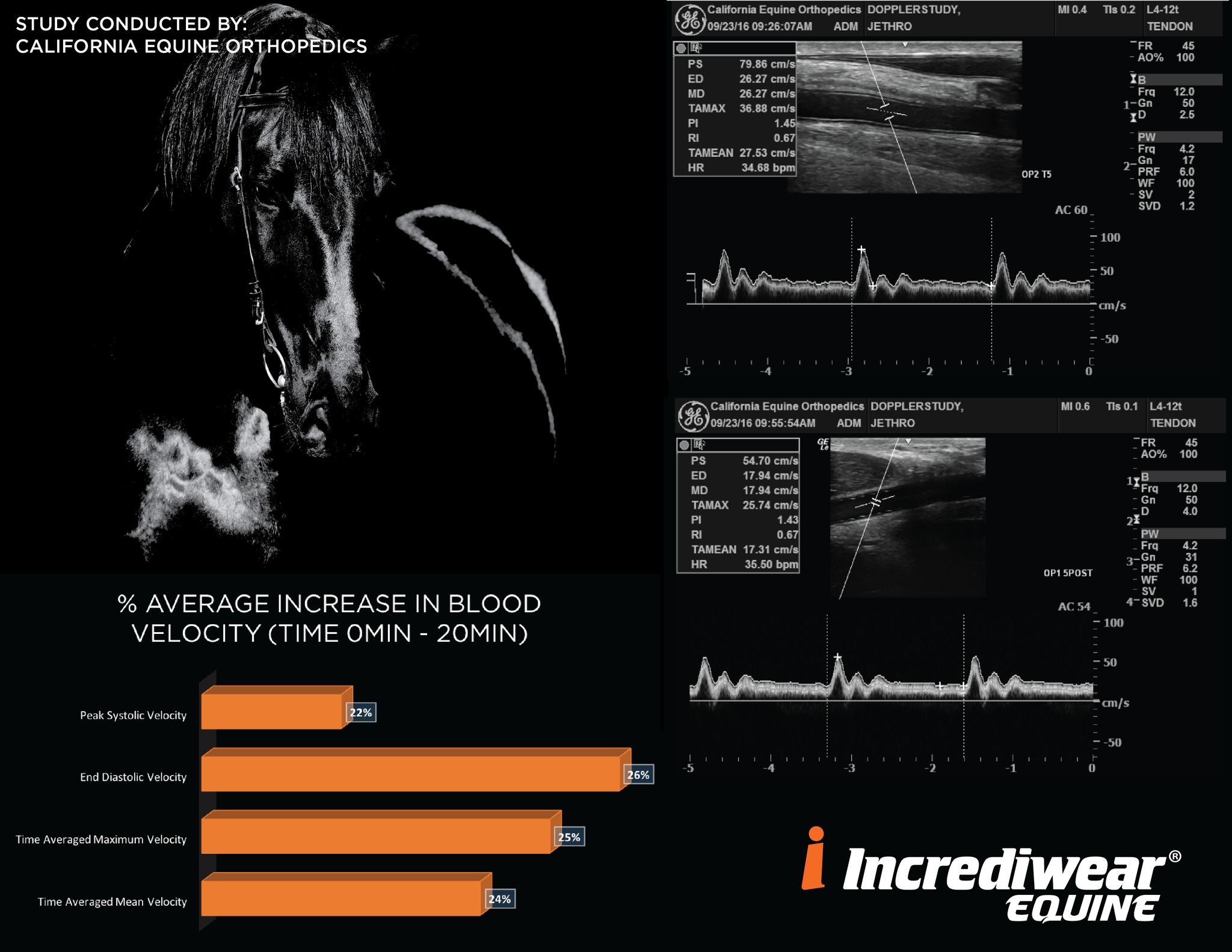Incrediwear Equine Increase Blood Velocity Study