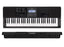 Teclado Casio Organo Ct-x800 Sensitivo de 61 Teclas-PIANOS ROCKS