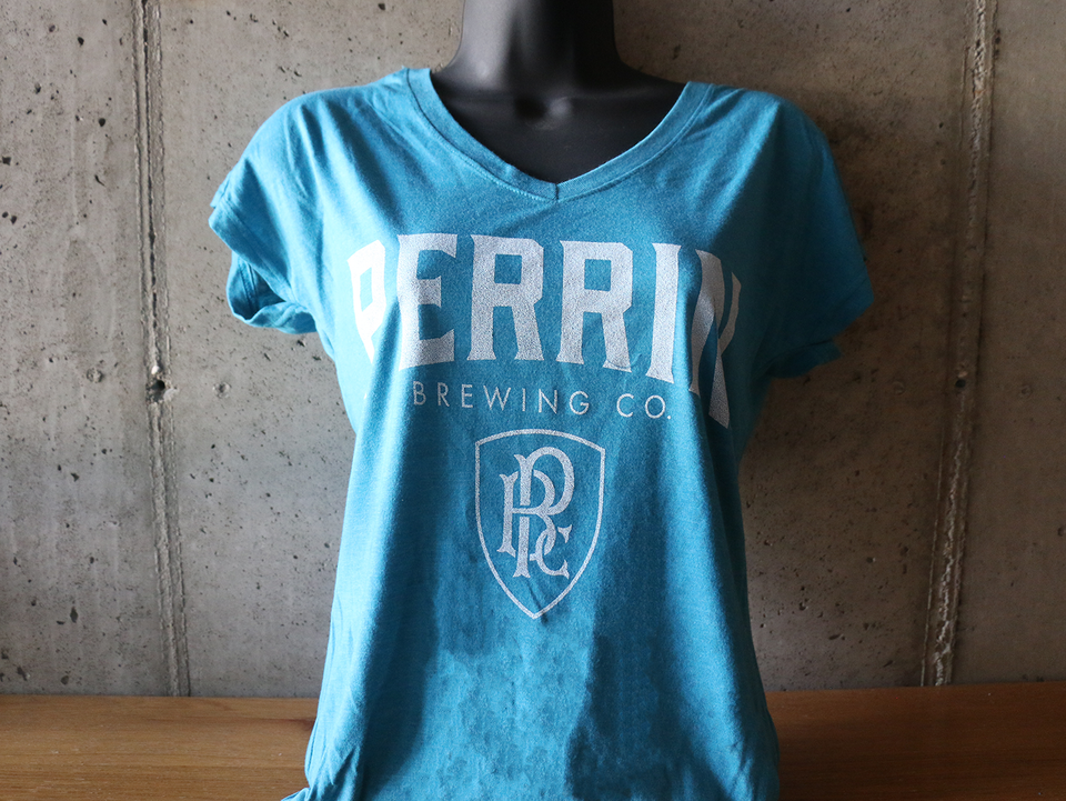 Ladies Teal V-Neck Tee