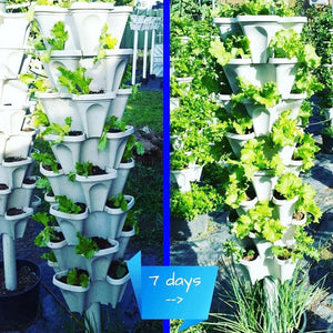 Flower Tower™ Vertical Stacking Plant Pots